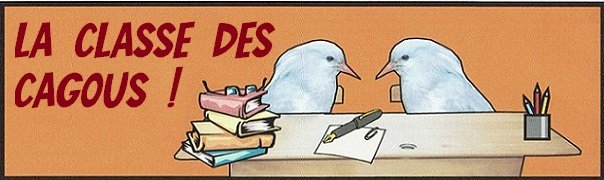 LA CLASSE DES CAGOUS, LE NOUVEAU BLOG dans Classe cagous3
